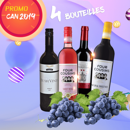 Promo CAN 2019 selection 4 vins