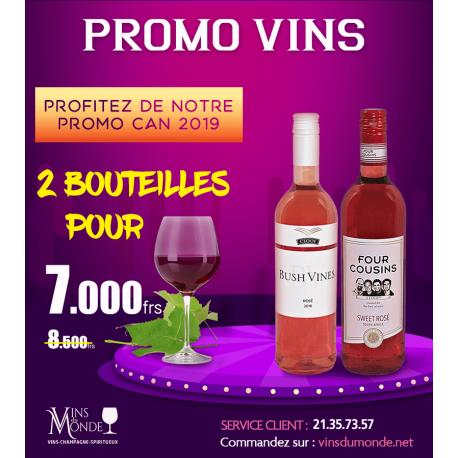 Promo CAN 2019 sélection 2 bouteilles